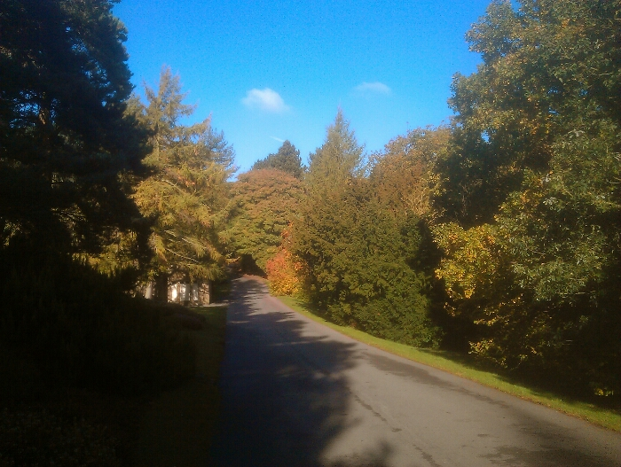 Autumn at the Entrance to Whirlowdale Park Sheffield